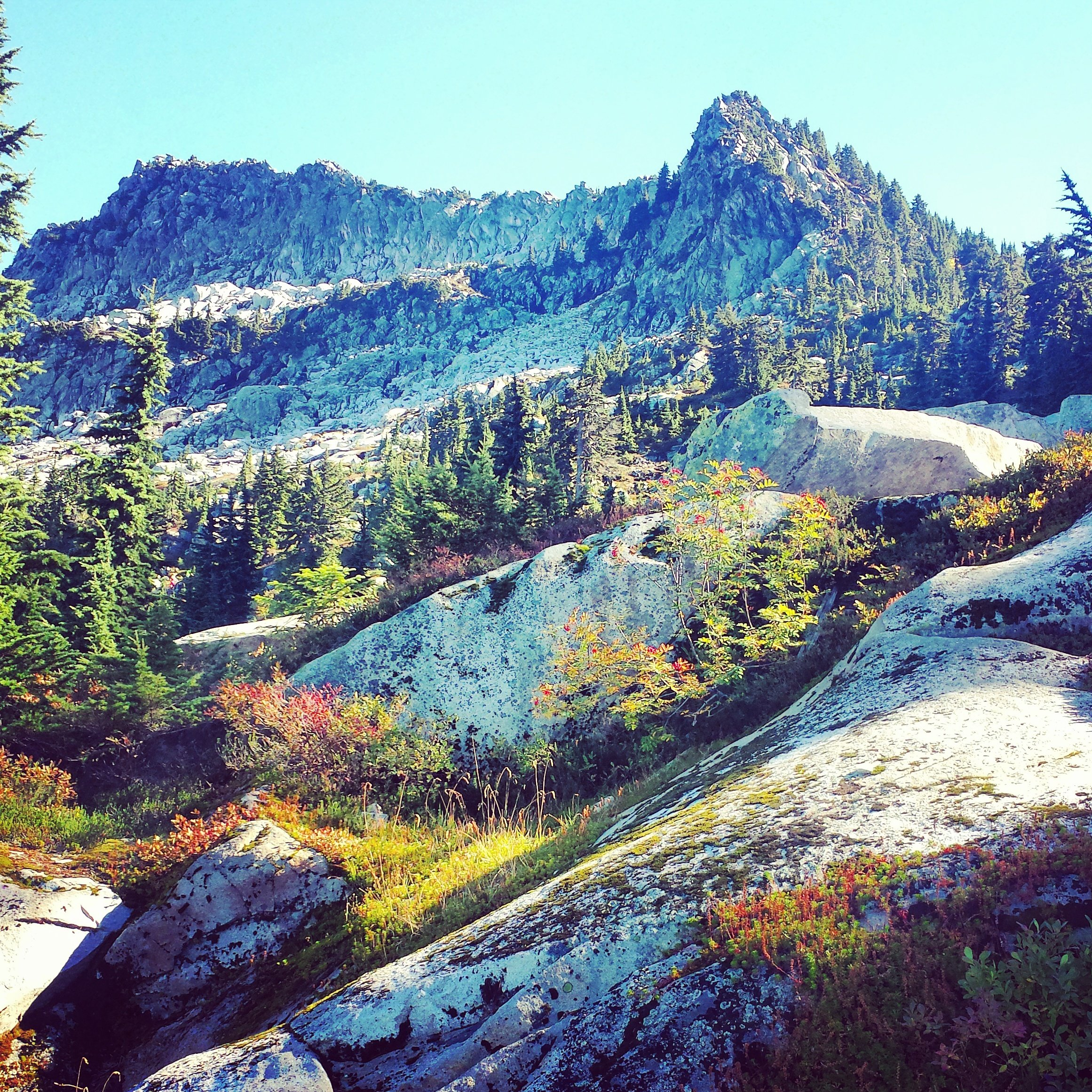 Photo Journal Mount Pilchuck, WA by Sabrina Brett 2